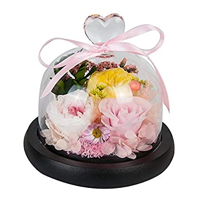 Eternal Rose- Preserved Flower Rose Handmade Fresh Flower Rose with Beautiful Creative Heart Design Gift for Valentine's Day Mother's Day Christmas Anniversary Birthday Thanksgiving Girls(PINK)