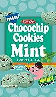 イトウ製菓 ミニチョコチップクッキーミント 36g ×10袋