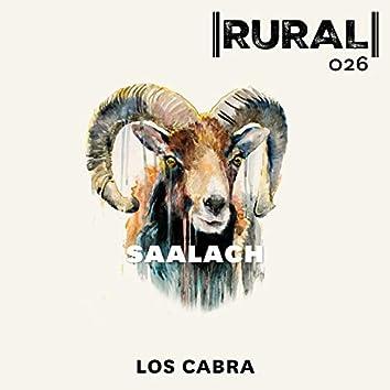 Saalach