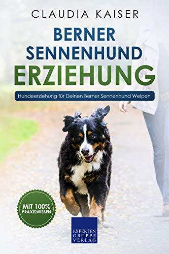 Berner Sennenhund Erziehung: Hundeerziehung für Deinen Berner Sennenhund Welpen (Berner Sennenhund Band 1)