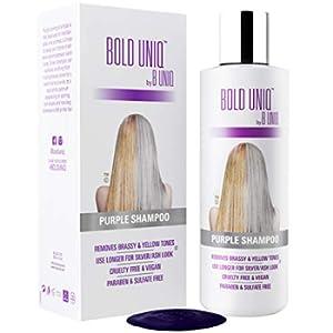Shampoo Antigiallo Per Capelli Biond - Tonalizzante Capelli - Silver Shampoo Per Toni Violacei - Rivitalizza i Capelli Biondi, Decolorati e Con Meches - Privo di Solfati - 250 ml