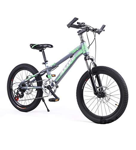 SJSF Y Kinder & Jugend Fahrrad 20 Zoll Fahrrad 7 Gang-Schaltung Mountainbike Scheibenbremse Stoßdämpfung Kinder Radfahren Mountainbike,Green