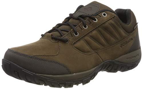 Columbia Ruckel Ridge Plus Waterproof, Zapatos Impermeables de Senderismo Hombre, Marrón (Cordovan, Madder Brown 231), 45 EU