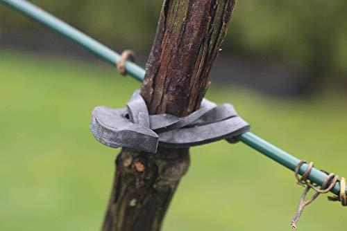 WoodBi Sicherer Baumbinder aus Gummi für alle Arten von Gehölzern Baumanbinder für Spaliere Baumschule (25, 110x4mm)