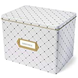 Jot & Mark Greeting Card Organizer Tin Box with Dividers, Cards, and Envelopes (Dots)