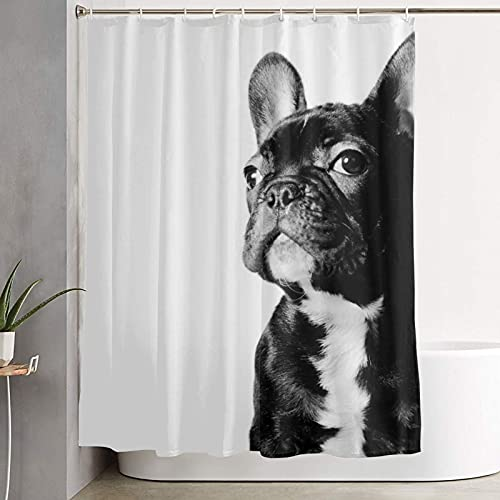 AMRANDOM Durable Polyester Bathroom Shower Curtain, Black French Bulldog White Waterproof Bathtub Shower Curtains 72 x 70 Inches, Eco-Friendly Bath Room Decor for Men Women Kids Room
