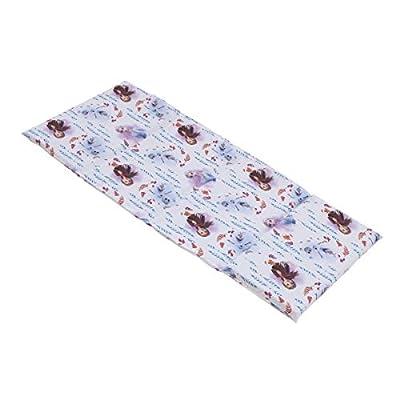 Disney Frozen 2 - Light Blue, Lavender & White Preschool Nap Pad Sheet, Light Blue, Lavender, White, Purple