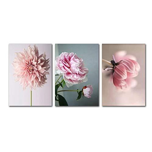 zhengchen Impresión en Lienzo Nordic Life Pink Flowers Wall Art Pictures Póster e Impresiones Lienzo Pintura Sala de Estar Decoración Moderna del hogar 50x70cm / 19.6'x27.5 x3 Sin Marco