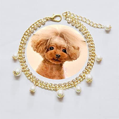 RayMinsino Collares para mascotas, perlas, diamantes, rosas, gatos y perros, collares, joyas, accesorios