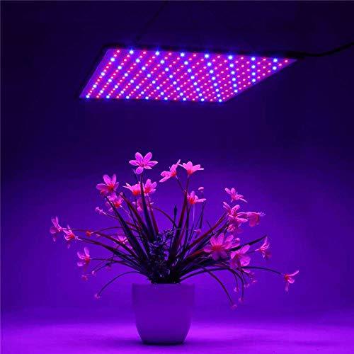 YOBENS NBM 1000W voedende groeilamp voor planten LED waxen licht totale spectrum fyto lamp indoor kruiden licht voor kas LED waxen