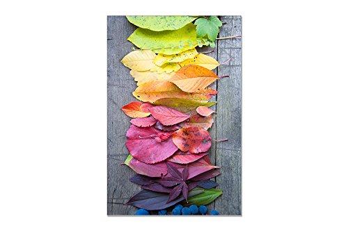 deinebilder24 - Foto auf Wandbild - 120 x 80 cm - Regenbogenlaub, bunter Herbst