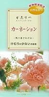 日本香堂 *かたりべ カーネーション バラ詰×60点セット (4902125264410)