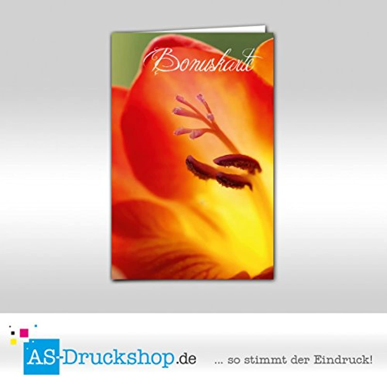 Bonuskarten Floristik -Blüte 250 Stück B07D3XSXP2 | Ausgang  Ausgang  Ausgang  | Abrechnungspreis  | Attraktives Aussehen  25c465