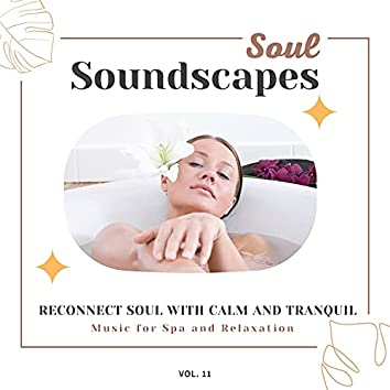 Soul Soundscapes, V11 - Reconnect Soul With Calm And Tranquil Music For Spa And Relaxation