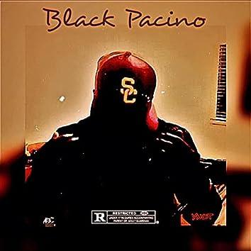 Black Pacino