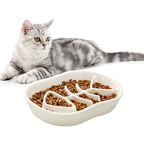 Ceramic Slow Feeder Cat Dog Bowls - Unique Fishbone Fun Interactive Design Feeder Bowl,Preventing Pet Feeder Anti Gulping Healthy Eating Diet Pet Bowls Against Bloat,Indigestion and Obesity (White)