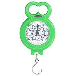 Balances suspendues, balances à crochet suspendues à ressort de 10 kg, pêche portable pour mesurer le colis de bagages…
