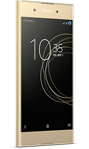 Sony Xperia XA1 Plus Smartphone (14 cm [5,5 Zoll] Bildschirm, 32 GB Speicher, Android 7.0) gold