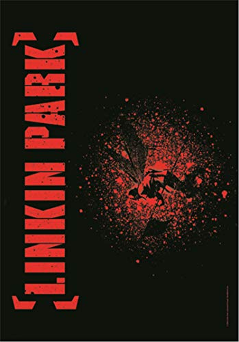 LINKIN PARK POSTERFLAGGE FLAGGE FAHNE SOLDIER QUER
