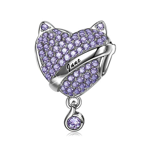 NINAQUEEN Charm fit Pandora Charms Women's Jewellery Best Gifts Purple Birthstone June Alexandrite with Jewellery Box 925 Sterling Silver