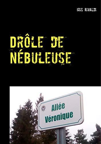 Drôle de nébuleuse: Les aventures du commissaire Paul Berger (Le Grogneux (7))