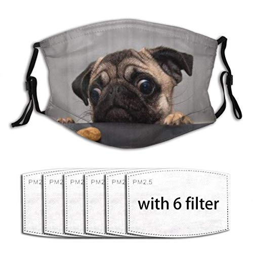 Face mask reusable Animals Cute Pug Dog Want to Eat Food Dust Washable Mouth Warm Windproof Cotton Face Made in USA