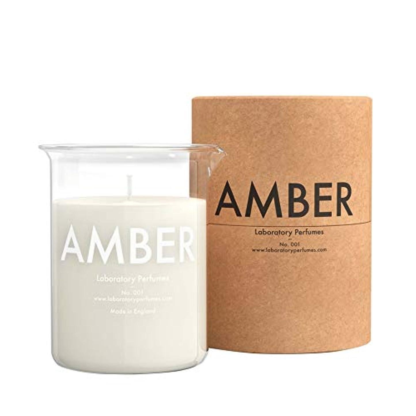 女の子曖昧な懐疑論[Laboratory Perfumes ] 実験室の香水琥珀色のキャンドル - Laboratory Perfumes Amber Candle [並行輸入品]