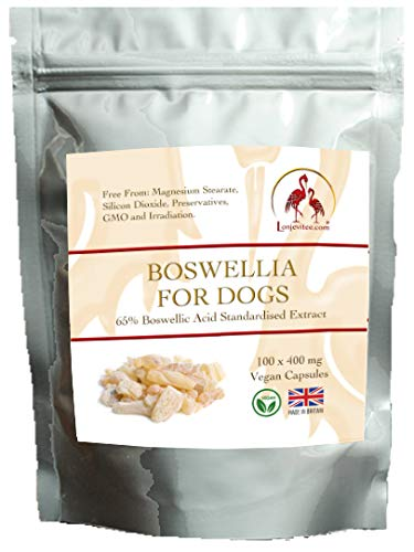 Lonjevitee Boswellia for Dogs 100 x 400 mg vegan capsules.