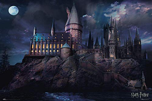 ERIK - Póster Harry Potter Hogwarts, 61 x 91, 5 cm