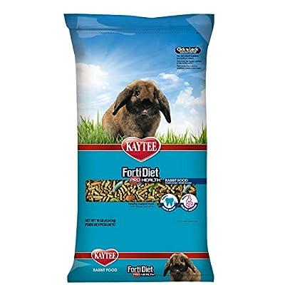 Kaytee Forti Diet Pro Health Rabbit Food For Adult Rabbit, 10-Pound from Kaytee