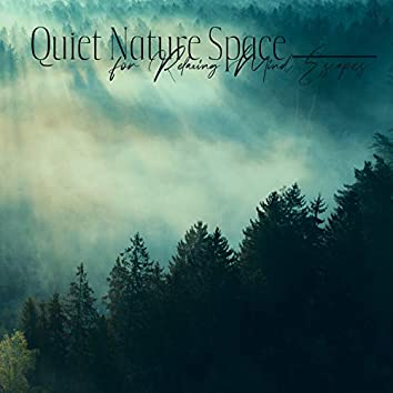 Quiet Nature Space for Relaxing Mind Escapes - Rest and Recovery
