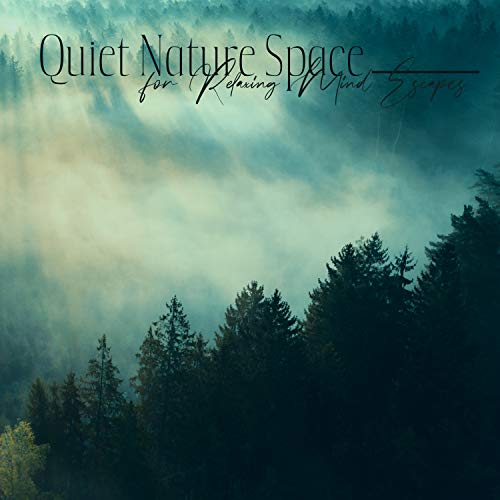 Irish Flute of Soothing Magical Celtic Tales
