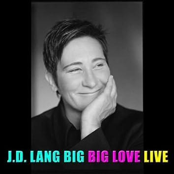 Big Big Love Live