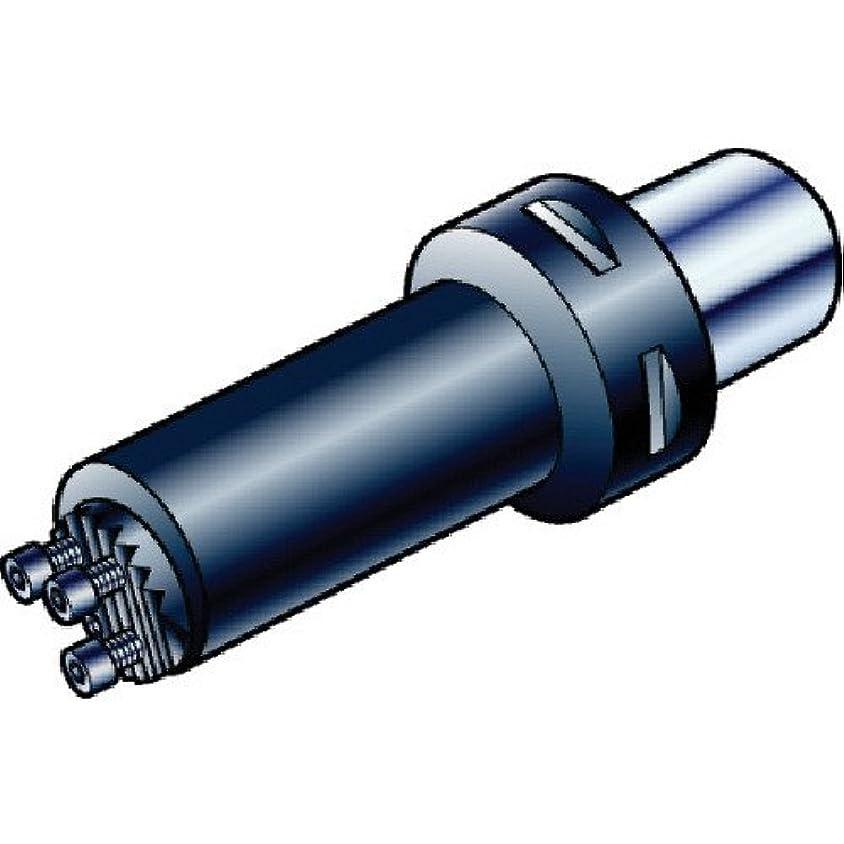 バーベキュー酸化物居眠りするサンドビック コロマントキャプト コロターンSLボーリングバイト C65702C5012440R