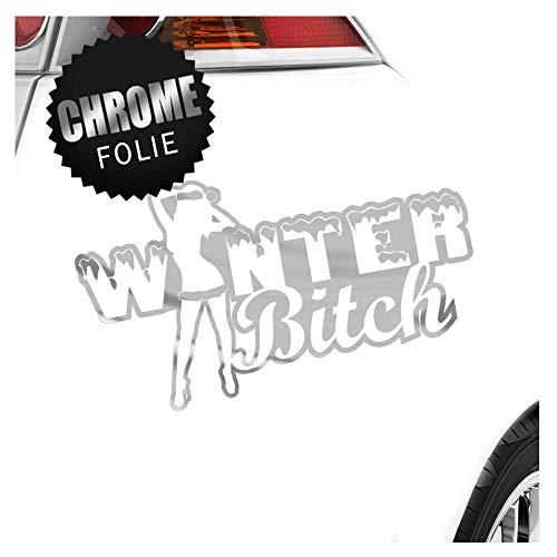 Hiver Bitch Design 2 17,5 x 10 cm en 15 couleurs – Fluo + Chrome. Autocollant