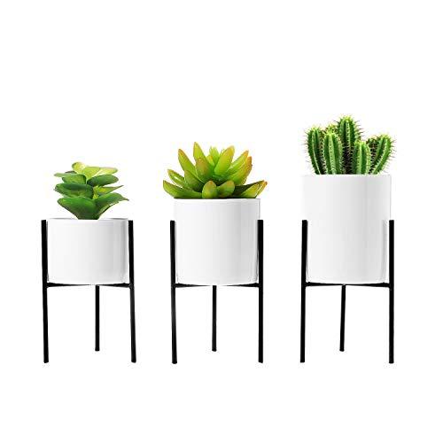 T4U 8cm Mini Sukkulenten Töpfchen Weiß Keramik Rund mit Ständer 3er-Set für Miniaturpflanzen Zimmerpflanzen Kakteen