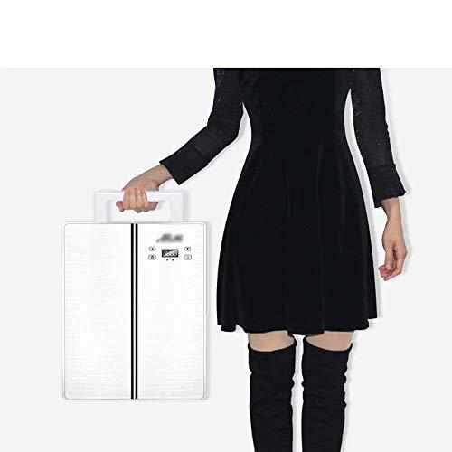 Refrigerador de coche de 25 litros, mini refrigerador de doble núcleo de doble puerta, doble uso, caliente y frío, doble uso, 220 V CA/12 V CC (color: blanco) 33 x 44 x 35 cm