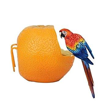 Mangeoire pour animaux de compagnie oiseaux suspendus oiseaux en forme d'orange, récipient de nourriture perroquet oiseaux hamsters bol suspendu pour cage eau d'alimentation alimentaire bol 1 PC