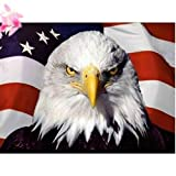 5D DIY Diamond Painting by Number Kits,DIY Diamond Painting kit for Hone Wall Decoration Bald Eagle American Flag 15.7x11.8inch