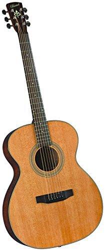 Bristol BM-14 000 Acoustic Guitar [並行輸入品]