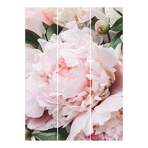 Bilderwelten Cortinas deslizables - Light Pink - 3 Paneles japoneses Sin Montaje 250x180cm