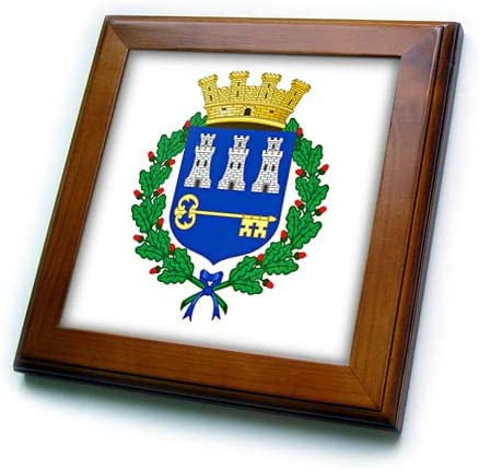 3dRose Carsten Reisinger - Illustrations Coat of Arms S Spring new work half one after another Havana