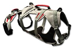 Ruffwear DoubleBack Harness - Best Hiking Harness for Dogs