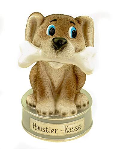 Kremers Schatzkiste Spardose Haustierkasse für Tierarztbesuch oder den neuen Hund 17 cm Polyresin Sparschwein