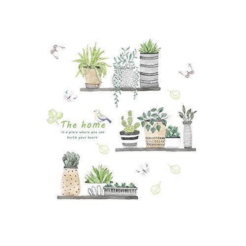 Creativas de la pared plantas...