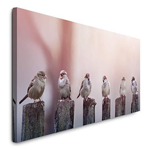 Paul Sinus Art GmbH Vögel auf Holzstämmen 120x 50cm Panorama Leinwand Bild XXL Format Wandbilder Wohnzimmer Wohnung Deko Kunstdrucke