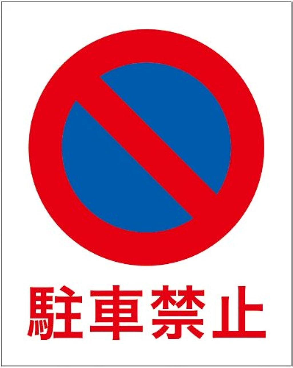 ヘア正確にミネラル「駐車禁止(S)」 床や路面に直接貼れる 路面表示ステッカー 300X230mm
