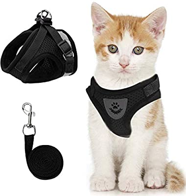 Cat Vest Harness and Small Dog Vest Harness for Walking, All Weather Mesh Harness, Cat Vest Harness with Reflective Strap, Step in Adjustable Harness for Small Cats (Black, XS)