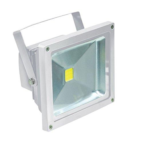 Electrovision - Projecteur à LED - Couleur: Blanc - Dimensions: 30W