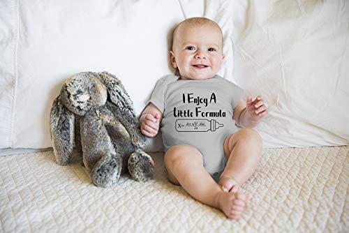 I Enjoy A Little Formula - Math Nerd - Funny Cute Novelty Infant Creeper, One-Piece Baby Bodysuit (Light Grey, Newborn)